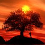 5 ложных ограничений в жизни человека