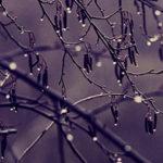 9 признаков психологической травмы
