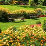 Сказка «Был у меня сад…»