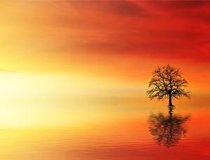 Медитация самопрощения